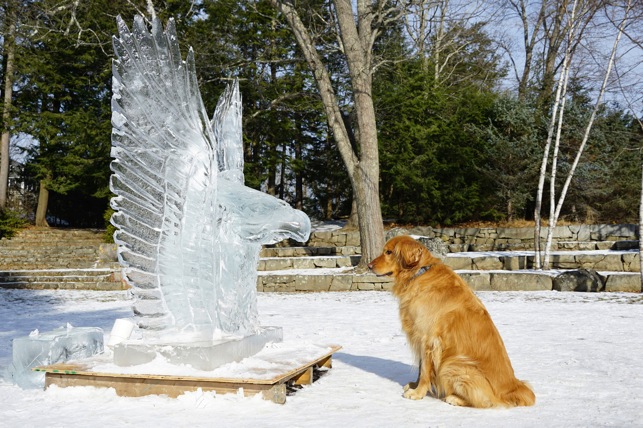 Ice Carving Teams Wanted for WINTERFEST!