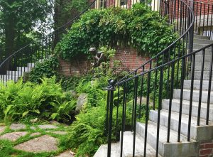Library's Distinctive Double Staircase Safely Restored