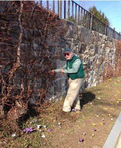 Amphitheatre Clean-Up Day – Volunteers Needed!